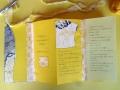 Künstlerfaltbuch Camus 2 mit festen Deckeln und Arbeitstexten